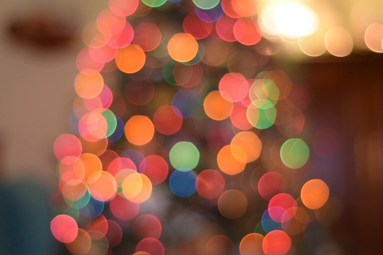 Christmas tree in festive season